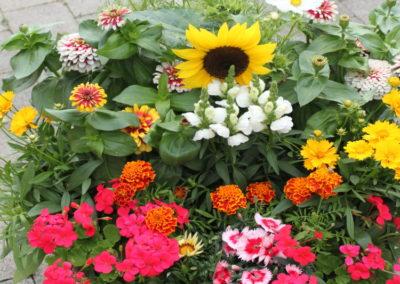 Blumel Kilger Dekoration8